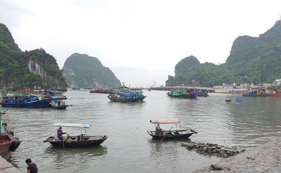 Quảng Ninh kêu gọi tàu thuyền vào tránh trú bão số 3