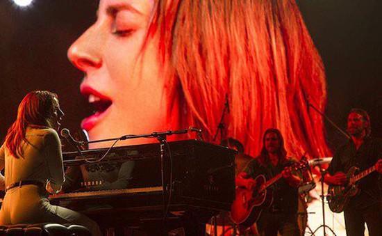 """Lady Gaga phản pháo khi hit """"Shallow"""" bị tố đạo nhạc"""