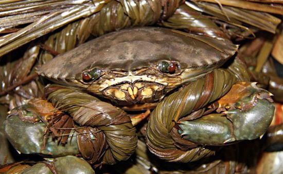 Trà Vinh: Giá cua biển tăng cao