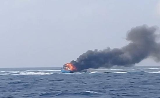 Cứu 13 ngư dân gặp nạn trên biển về cảng Ba Ngòi