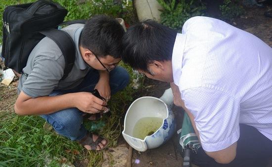 Hà Nội: Xử phạt các hộ gia đình, hộ kinh doanh không hợp tác phòng chống dịch sốt xuất huyết