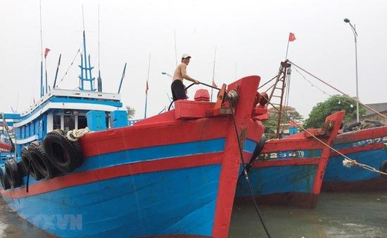 Thanh Hóa khẩn trương kêu gọi tàu thuyền tránh trú bão