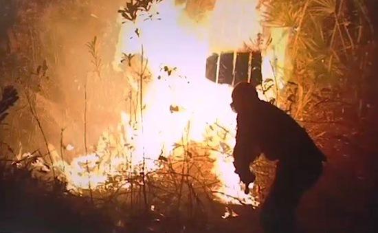 Giữa biển lửa Amazon