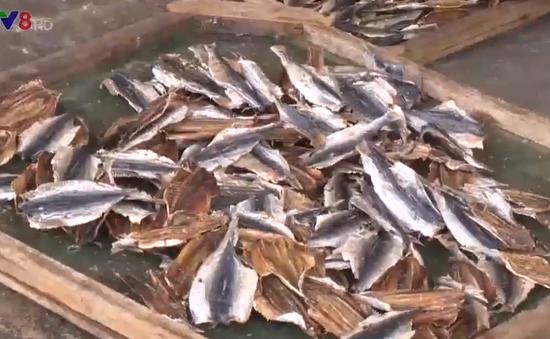 Hàng ngàn tấn cá tồn kho - Làng nghề điêu đứng