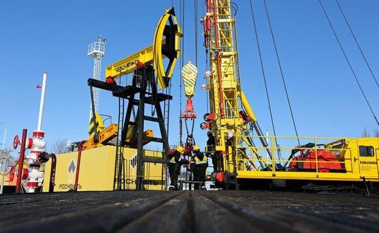 Nga phản đối Mỹ trừng phạt tập đoàn dầu mỏ Rosneft