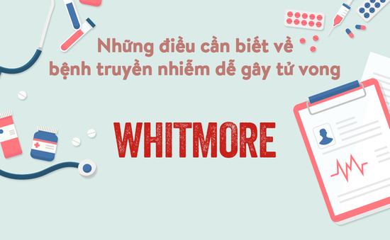 INFOGRAPHIC Những điều cần biết về bệnh truyền nhiễm dễ gây tử vong - Whitmore