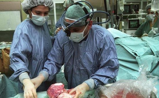 Bulgaria triệt phá đường dây buôn bán nội tạng người