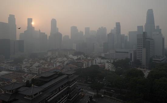 Chất lượng không khí tại Singapore thấp nhất trong nhiều năm qua