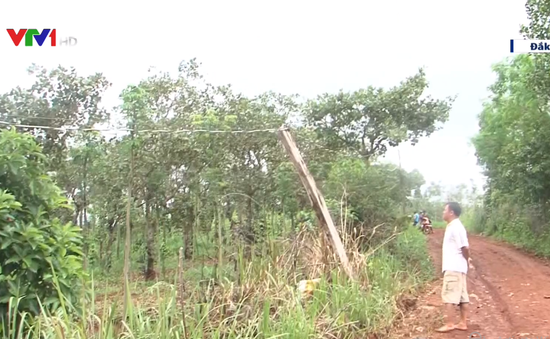 Cảnh báo mất an toàn lưới điện khu vực nông thôn