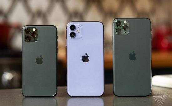iPhone 11 giảm giá mạnh chỉ sau 1 ngày bán tại Việt Nam