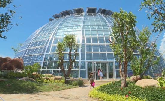 Sôi động khuyến mãi du lịch mùa thu tại Nha Trang