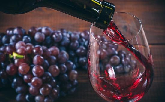 Rượu vang đỏ tốt cho đường ruột