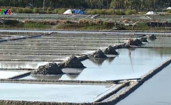 Diêm dân không mặn mà với nghề do giá muối bấp bênh