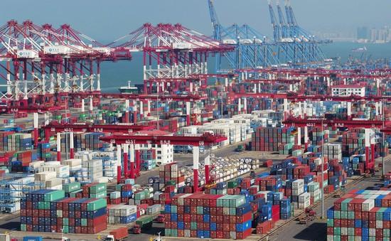Xuất khẩu của Trung Quốc sụt giảm trong tháng 8/2019