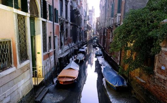Sau ngập lụt, các kênh đào Venice lại cạn nước