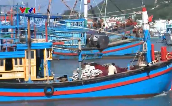 Ngư dân bám biển xuyên Tết
