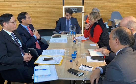 Việt Nam và Nghị viện châu Âu trao đổi về tiến trình phê chuẩn EVFTA và EVIPA