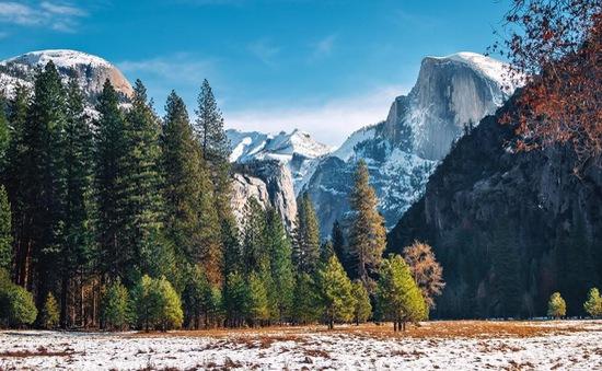 Hơn 170 người mắc bệnh nghi do norovirus tại Công viên quốc gia Yosemite, Mỹ