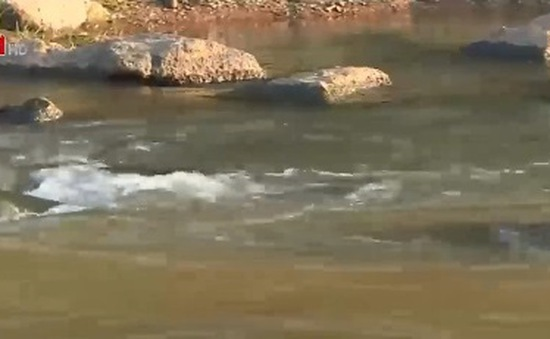 Khai thác vàng trái phép gây ô nhiễm sông Đakrông