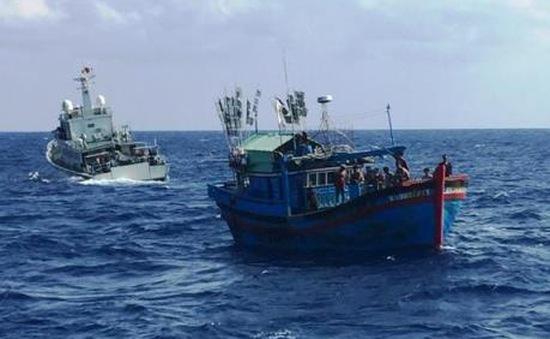 Cứu nạn tàu cá trôi dạt trên biển