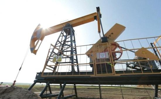 Giá dầu giảm mạnh sau khi Hội nghị OPEC+ bị trì hoãn