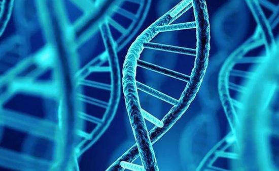 Chỉnh sửa ADN chữa bệnh đột biến gene