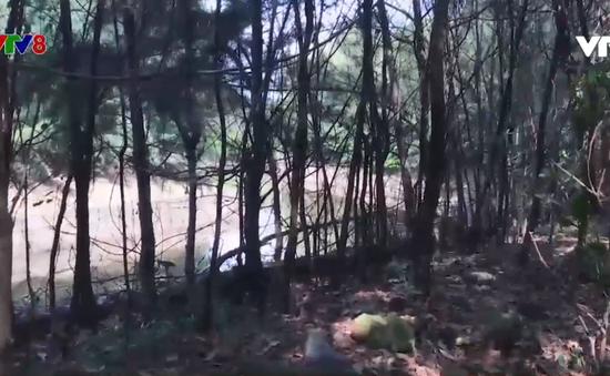Đà Nẵng: Công viên thành đất trống bỏ hoang