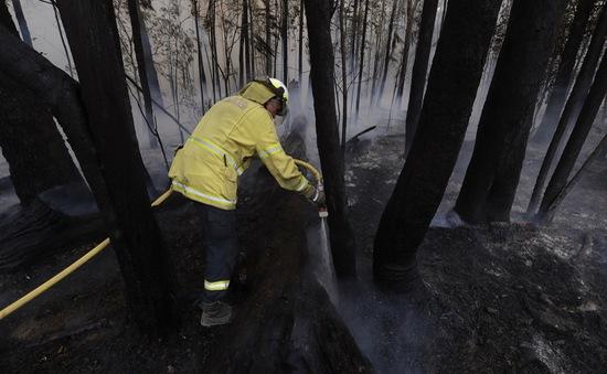 Khói bụi từ cháy rừng ở Australia lan sang Nam Mỹ