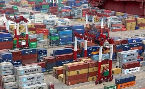 WTO ra mắt cơ sở dữ liệu mới về cấp phép nhập khẩu