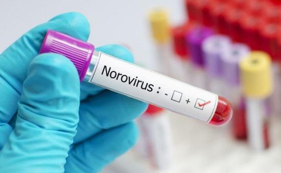 Hàng loạt sinh viên Trung Quốc nhiễm Norovirus