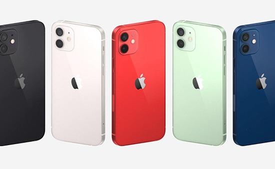 """iPhone 12 vừa ra mắt, nhiều trang web đã nhận """"đặt hàng"""""""