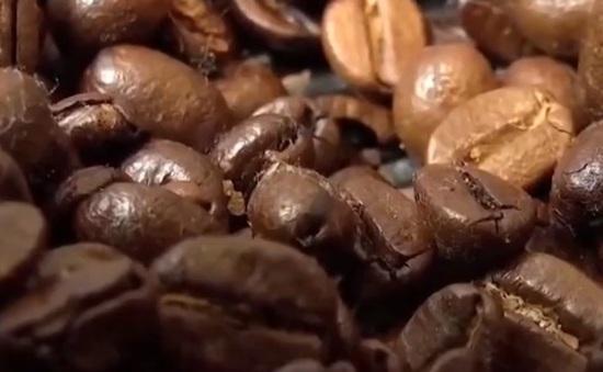 Nhập khẩu cà phê ở Trung Quốc tăng mạnh