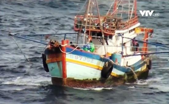 """Thời tiết bất thường đúng mùa """"thu hoạch"""" hải sản, nhiều ngư dân gặp nạn"""