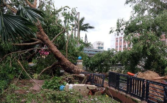 Người dân cần ứng phó thế nào trong và sau cơn bão?