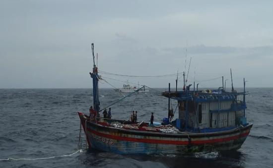 Tàu cá cùng 9 ngư dân mất liên lạc 3 tuần