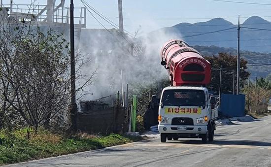 Hàn Quốc cấm nhập khẩu thịt gia cầm từ Hà Lan do bùng phát dịch cúm