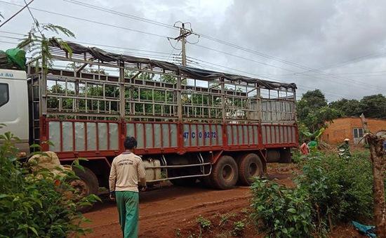 Sửa dây điện bị đứt do xe tải vướng vào, nam thanh niên bị điện giật tử vong