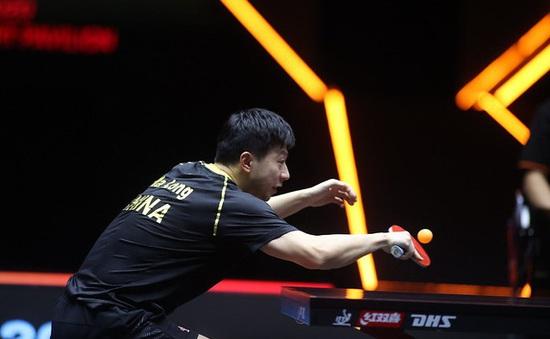 Ma Long và Wang Chuqin vào chung kết đơn nam giải bóng bàn WTT Finals