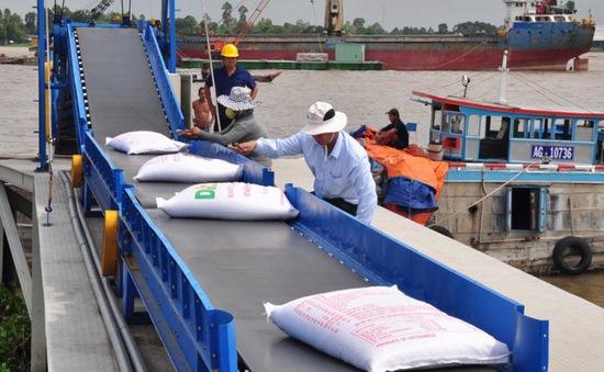Xuất khẩu gạo 2020: Một năm nhiều đột phá