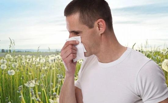 10 bài thuốc trị viêm xoang cực kỳ hiệu quả