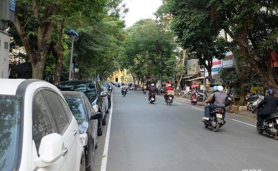 Chặt hạ, di chuyển 40 cây xanh phố Trần Hưng Đạo để thi công ga ngầm Trần Hưng Đạo