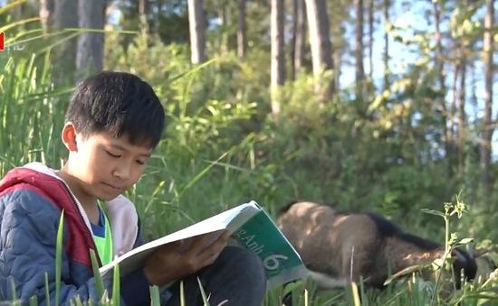 Ước mơ bác sĩ của cậu bé chăn dê hiếu học