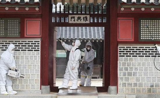 Bộ Y tế Hàn Quốc lên tiếng về tin đồn ăn kim chi ngăn virus corona mới