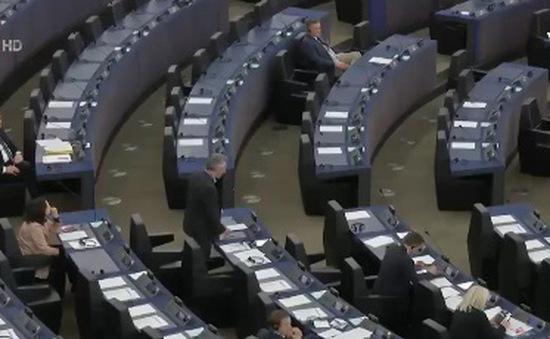 Nghị viện châu Âu thảo luận lần cuối trước khi phê chuẩn EVFTA với Việt Nam
