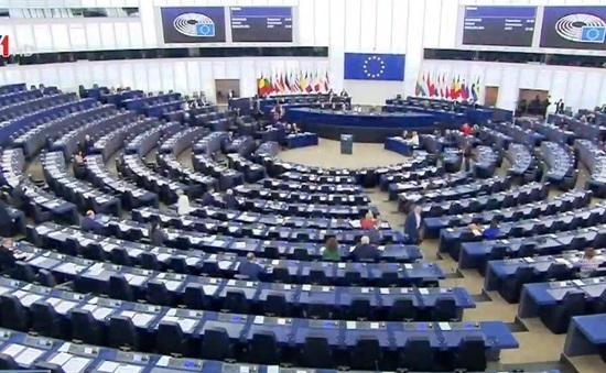 Ý nghĩa việc EU phê chuẩn EVFTA và EVIPA