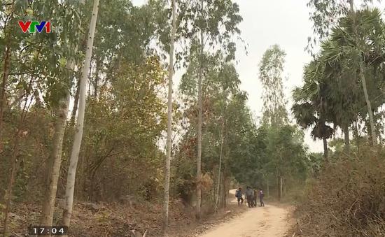 Hơn 7.000 ha rừng An Giang ở cấp cháy cực kỳ nguy hiểm