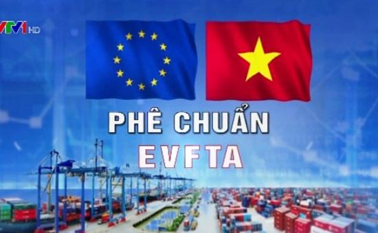 Phê chuẩn EVFTA và EVIPA: Việt Nam - Đối tác tin cậy của châu Âu