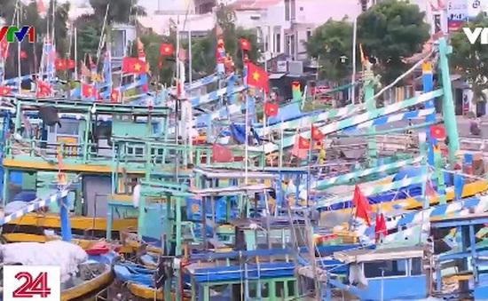 Bình Thuận: Hàng trăm tàu cá nằm bờ vì thiếu lao động