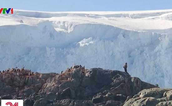 Nhiệt độ Nam Cực lần đầu tăng trên 20 độ C