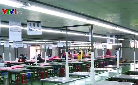 Đào tạo lao động Việt Nam thay thế sự thiếu hụt của lao động nước ngoài